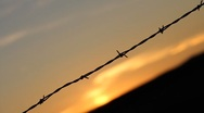 Stock Video Footage of Sunset Barbed Wire Fence