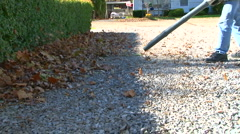 Home owner piling up autumn leafs with a leaf blower  - stock footage