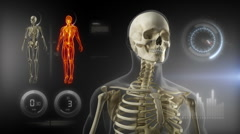Human body medical scan concept Stock Footage