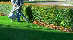 Home owner shredding autumn leaves Stock Footage