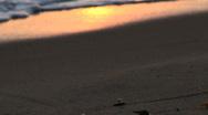 Golden Ocean Shore Stock Footage