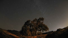 Night time lapse of star trails and Valley Oak Tree during a new moon Stock Footage