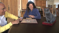 Elderly man/young woman play scrabble/ Russian Blue grey cat Stock Footage