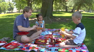 Young father with two kids on Family Picnic Stock Footage