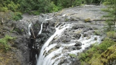 Tilt down time lapse of Englishman River Falls Provincial Park Stock Footage