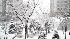 City snow scene Stock Footage