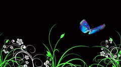 Butterfly and plants Stock Footage