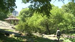 Person walking through Central Park, Manhattan, New York City Stock Footage