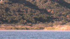 An eight person rowing sweep being followed by their coach on Lake Casitas Stock Footage