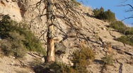 Stock Video Footage of Tent Rock 1326