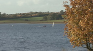 Dinghies beyond autumn tree - Rutland Water. Stock Footage