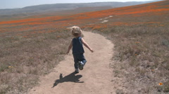 Rear point of view of child running through the california poppies in bloom Stock Footage