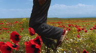 Running in the poppy Field  Stock Footage