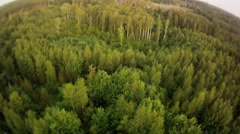 Fish eye view on summer forest from hot air balloon Stock Footage