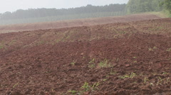 Rain Plowed Field - stock footage