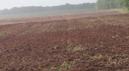 Stock Video Footage of Rain Plowed Field