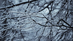 Loop. Heavy snowing, big snowflakes. Winter. Stock Footage