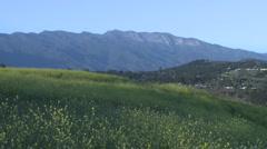 Meadow and the Topa Topa mountain in Ojai, California. Stock Footage