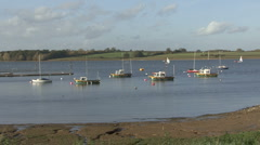 Boats moored to buoys near marina on Rutland Water. - stock footage