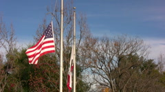 Flags On Windy Day Stock Footage
