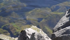 Gentle water lapping against the rocks - stock footage