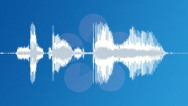 Stock Sound Effects of voc - systems online