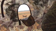Wild Turkey Hunting Stock Footage
