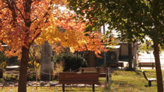 Park with Fall Trees - Iowa State Fair  Stock Footage