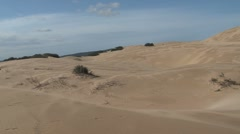 Sand dunes South Africa Stock Footage