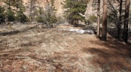 Stock Video Footage of Bandelier National Park  1961