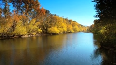 River and fall trees Stock Footage