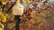 Stock Footage -Fall Scenic with street lamp  Stock Footage