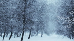 Loop. Heavy snowing, big snowflakes. Winter. - stock footage