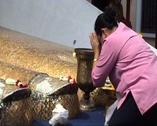 Wat Intharawihan, praying women Stock Footage
