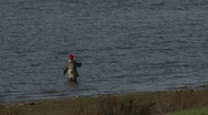 Angler stands in Rutland Water. Stock Footage