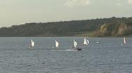 Stock Video Footage of Dinghies racecaross Rutland Water, RIB speeds by.