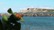 Puerto Rico - HD El Morro 1 Stock Footage