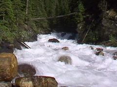 Stock Video Footage of wild rushing mountain river during run-off