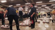 Stock Video Footage of Tokyo Fish Market 028