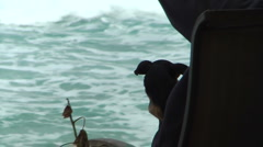Small Dog With Ocean Backround Stock Footage