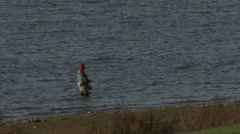 Angler stands in Rutland Water. - stock footage