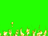 Real Slow Fire on the green screen NTSC Stock Footage
