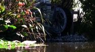 Water wheel Swan 01 Stock Footage