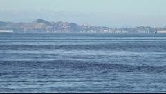 SF Bay Boats MVI 3452 Stock Footage