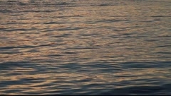 SF Bay Waves MVI 3483 Stock Footage