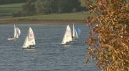 Dinghies race on Rutland Water. Stock Footage