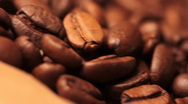 Stock Video Footage of Coffee Beans