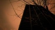 New York-Creepy Tree-building Stock Footage