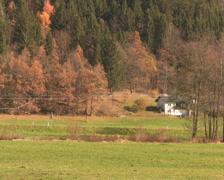 Alpine Pasture Stock Footage