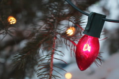 Christmas tree lights. Two shots. SD. - stock footage